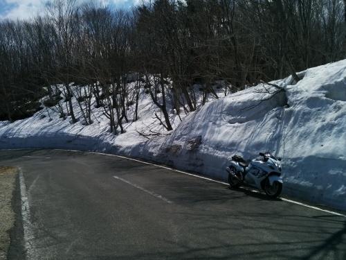 スカイラインへ入るとすぐに雪!